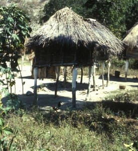 Stilted Hut